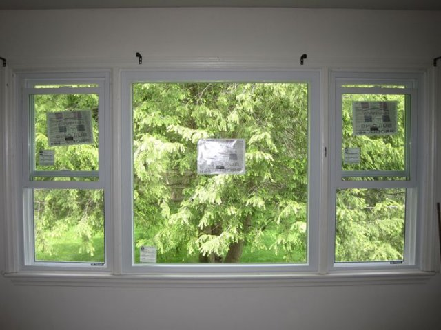 picture with double hung windows